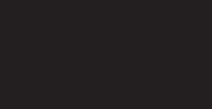 MustangElephant Logo